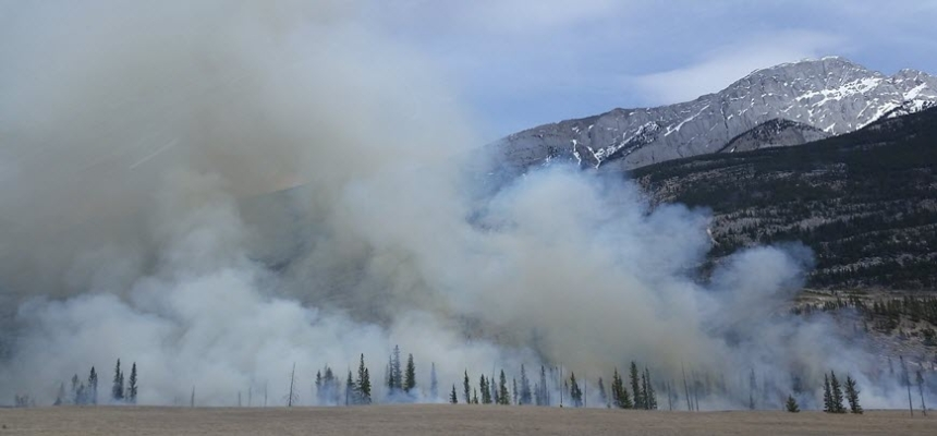 wildfire smoke disaster relief