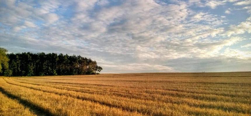 farm ranch acreage property
