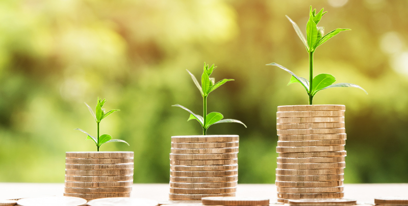 grow business money